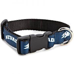 All Star Dog Collar
